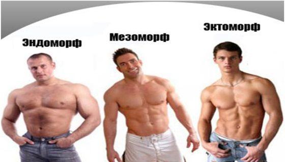 Как узнать какой у тебя тип телосложения