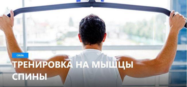 Тренировка на мышцы спины